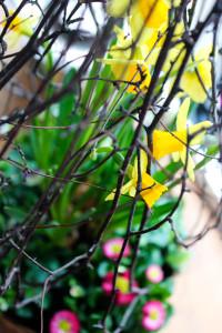 påskris och liljor